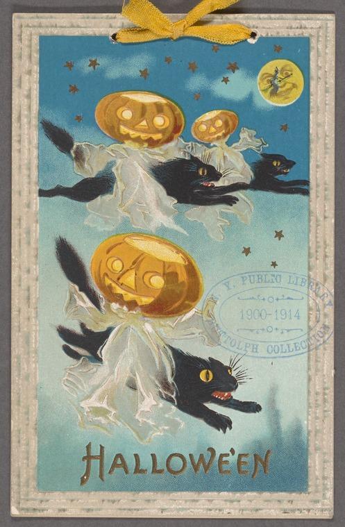 Des citrouilles d'Halloween volant sur des chats noirs au clair de lune